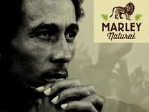Bob Marley y su nueva marca global de cannabis (VIDEO)